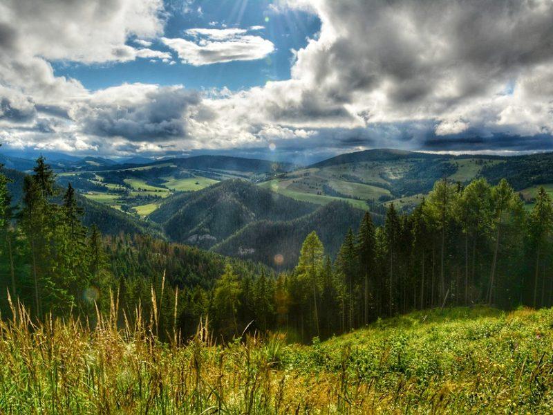 Summer Liptov Nature Traveling Slovakia